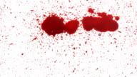Blood splat on white video