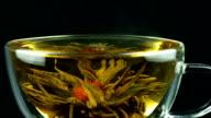 Blooming Tea video