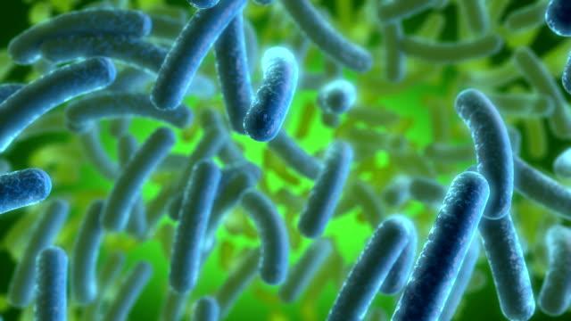 Blue Bacterias video