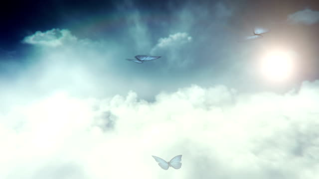 Blue butterflies flying (sky) - Loop video