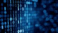 blue digital binary data on computer screen loopable video