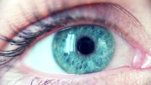 Blue Eye Macro video