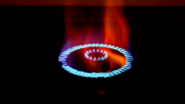 Blue gas flames of a burner with black background. video