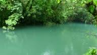 Blue River Stream Lagoon Rainforest Jungle National Parks Costa Rica video