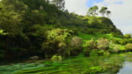 Blue Spring, New Zealand video