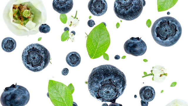 Blueberries falling down (ends on blue) video