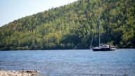 Boat empty-mast sailing against current of a river on background of slope mixed forest in a sunny day video