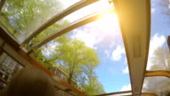 Boat excursion on a sunny morning in Amsterdam: a view through the glass roof video