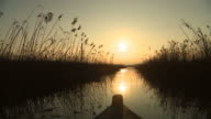 Boat proceeding on marsh water at sunset video