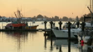 Boat Traffic Leaving Steveston Harbor video