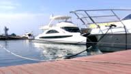 Boats at Harbor. video