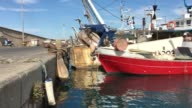 Boats at the wharf video