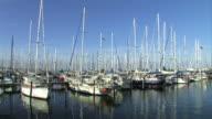 Boats in harbor- Marina Bay, 2 clips video