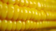 Boiled corn cob dolly shot video