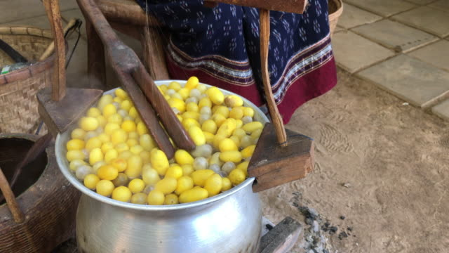 Boiled silkworm traditional folkways in Thailand. video