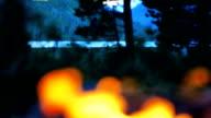 Bonfire in wilderness video