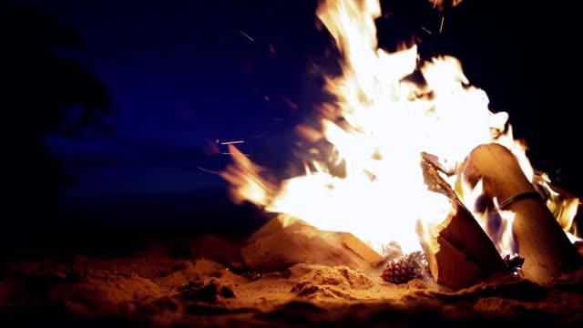 Bonfire on the beach sunset video