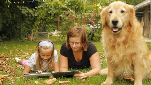 HD DOLLY: Bored Dog And Two Girls With Digital Tablets video