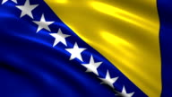 Bosnia-Herzegovina charming flag video