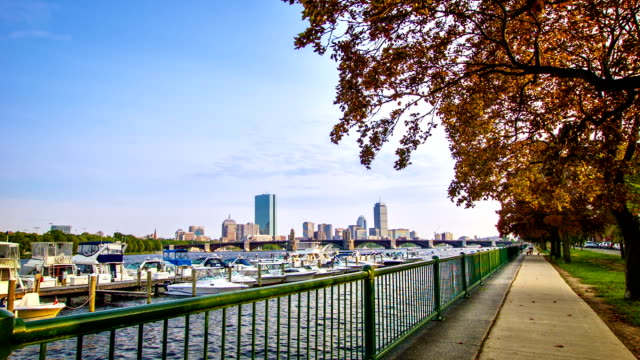 Boston bay video