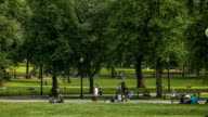 Boston Common Timelapse: People Enjoying a Summer Day at the Park. video