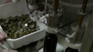 Bottle Capping video