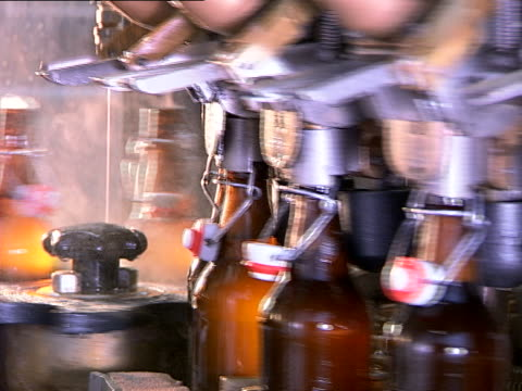 Bottle filling production line at beer factory video