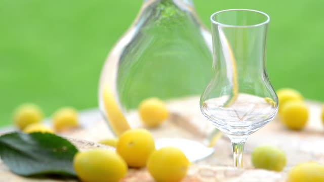 Bottle Mrabelle Fruit Brandy Mirabellenschnaps Obstler video
