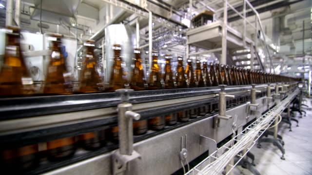 Bottles of beer go through the conveyor video