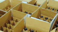 Bottles of wine are placed in cardboard boxes. Top view video