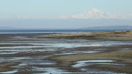Boundary Bay, Mount Baker View video