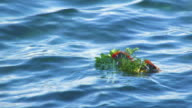 Bouquet of flowers into sea video