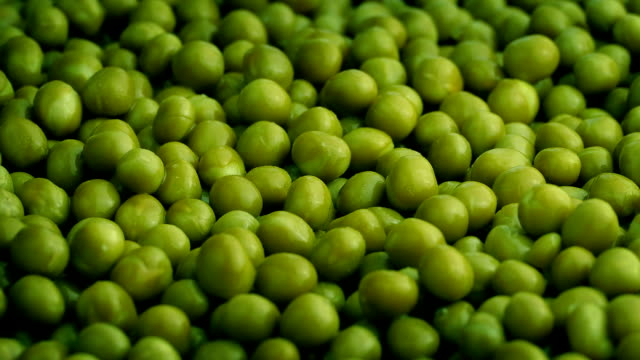 Bowl Of Green Peas Rotating video