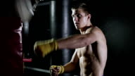 Boxer is suitable for training projectile. video