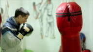 Boxer punching bag video