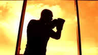 Boxer silhouette at sunset video