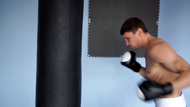 Boxer training in the gym video