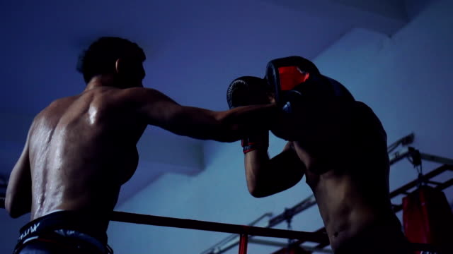 Boxers practicing in ring video