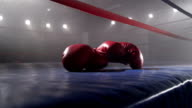 Boxing gloves laying in ring video