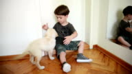 Boy and dog playing video