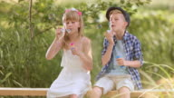 SLO MO Boy and girl blowing bubbles sitting on footbridge video