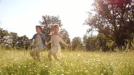 SLO MO Boy and girl holding hands running across meadow video