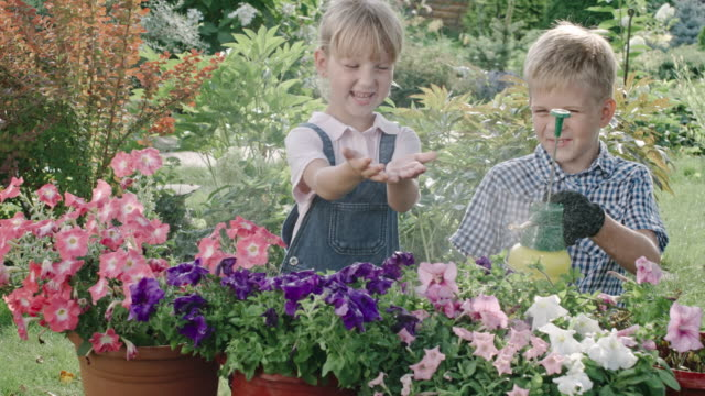 Boy and Girl Working in Garden video