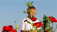 boy at flowers poppies video