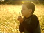 NTSC Boy Blowing on a Dandelion video