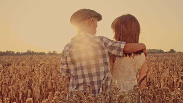 Boy embracing girl in the wheat field video
