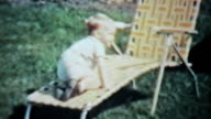 Boy Enjoys Playing Outside In The Yard-1963 Vintage 8mm film video