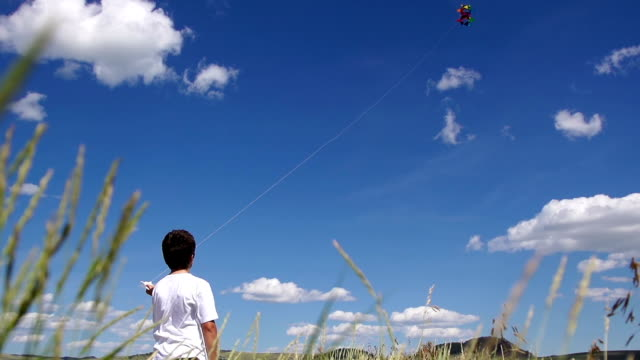 Boy Flies a Kite video