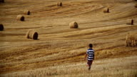 Boy going on the field, around the haystacks mown field, sunny day video