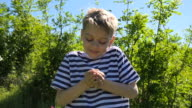 boy holding plucked daisy flowers video